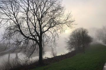 Worcester Riverside